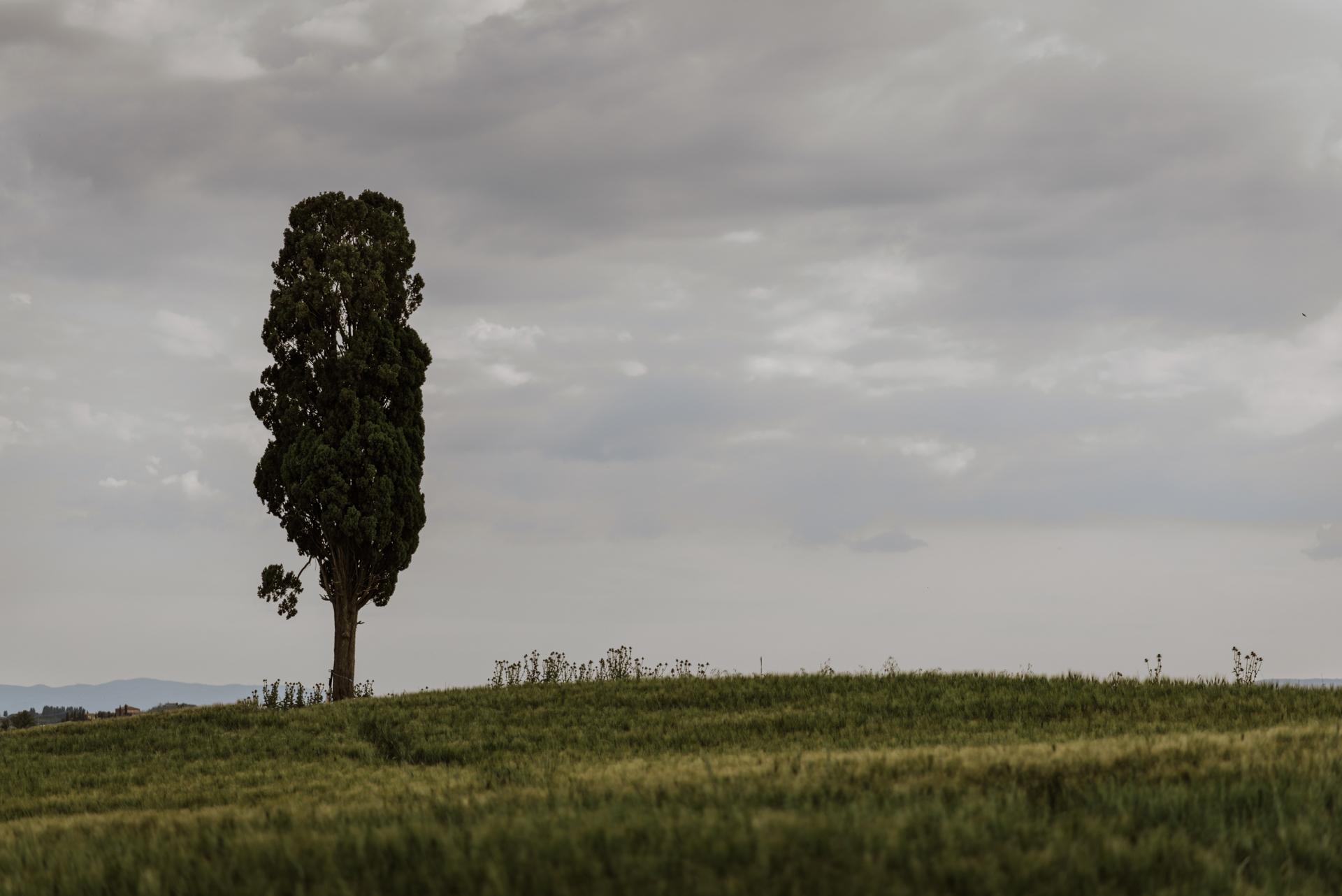 Fotografo a Siena Marco Vegni